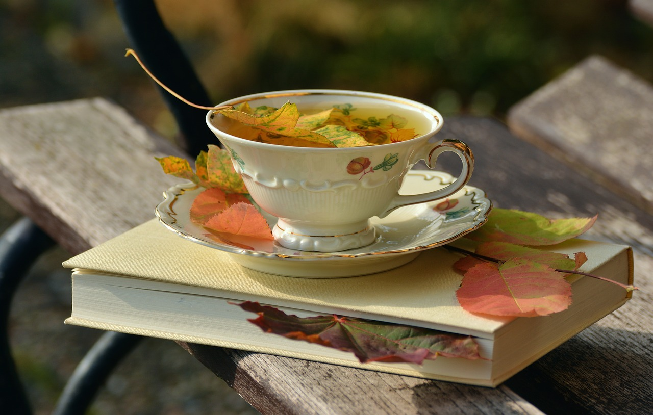 Teacup on a book, with autumn leaves